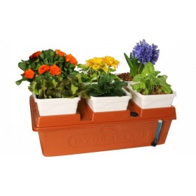 Emily hydroponic garden system
